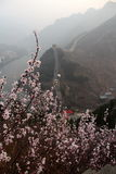 Fine day on the wall. The Great wall of china in spring Stock Image