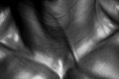 Fine del corpo umano su fotografia stock