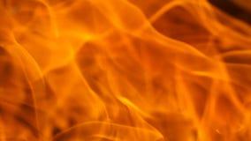 Fine del fuoco rosso del metraggio su Video di Hd stock footage