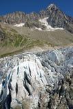 Fine del ghiacciaio di Argentiere su Immagini Stock