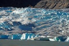 Fine del ghiacciaio di Mendenhall in su dal lago, Alaska Immagine Stock