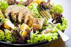 Fine del piatto dell'insalata di pollo in su Fotografia Stock Libera da Diritti