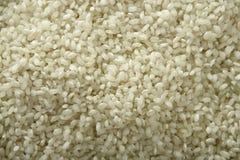 Fine del riso bianco su struttura. Reticolo della priorità bassa Fotografie Stock