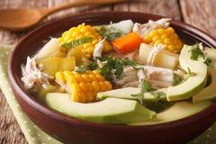 Fine deliziosa di ajiaco della minestra di patate su in una ciotola orizzontale fotografia stock