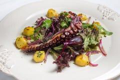 Fine dell'insalata del polipo su Immagine Stock