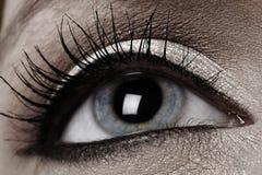 Fine dell'occhio umano in su Fotografia Stock Libera da Diritti