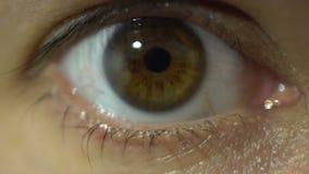 Fine dell'occhio umano sullo sguardo all'anatomia dettagliata di macro vista della macchina fotografica stock footage