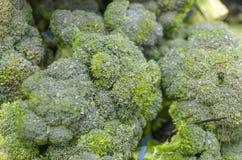 Fine dettagliata su di parecchi broccoli Immagine Stock Libera da Diritti
