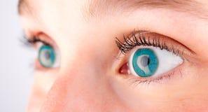 Fine dettagliata su di un occhio azzurro nell'alta definizione Fotografia Stock