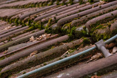 Fine di Clay Roof Shingles European German Moss Dirty Old Shed Top Fotografia Stock