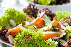 Fine di color salmone dell'insalata in su Fotografia Stock Libera da Diritti
