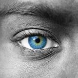 Fine di estremo dell'occhio azzurro in su Immagini Stock