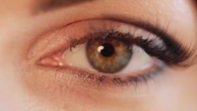 Fine di estremo dell'occhio umano sulla macro stock footage