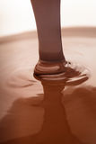 Flusso del cioccolato Fotografia Stock