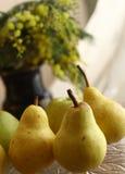 Fine di giallo delle pere sulla foto con il vaso e il mimose Fotografie Stock