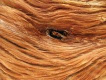 Fine di legno del nodo in su Fotografie Stock