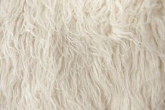 Fine di legno della fibra della coperta in su immagine stock