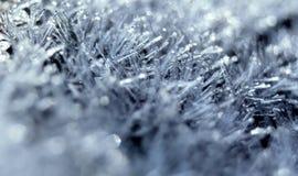 Fine di macro del gelo su immagini stock libere da diritti