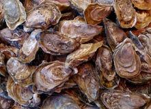 Fine di Oysters' su Immagine Stock Libera da Diritti