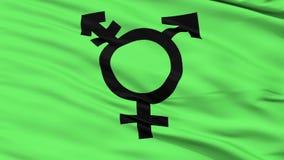 Fine di simbolo del transessuale su che ondeggia bandiera illustrazione di stock