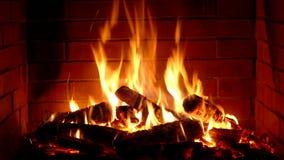 Fine di soddisfazione adorabile sulla vista sulla combustione di legno lentamente con la fiamma arancio del fuoco rosso in atmosf video d archivio