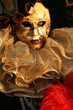 Fine di travestimento di Carnivale in su Fotografia Stock