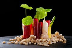 Fine dining appetizer in a gourmet restaurant Royalty Free Stock Image
