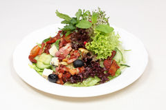 Fine dining meal, bacon salad. Variety of lettuce leaves mixed with tomatoes, olives and roasted sunflower seeds and bacon Royalty Free Stock Image