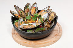 Fine dining meal, new zealand mussels. New Zealand mussels with green peppers, onion, garlic, parsley and herbs dipped in white wine Royalty Free Stock Photo