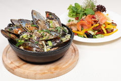 Fine dining meal, new zealand mussels and salmon. New Zealand mussels with green peppers, onion, garlic, parsley and herbs dipped in white wine. Salmon with Stock Photos