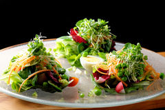 Fine dining mixed salad with ruccola, pine nuts, eggs Royalty Free Stock Photo