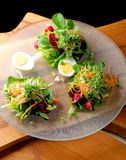 Fine dining mixed salad with ruccola, pine nuts, eggs Royalty Free Stock Images