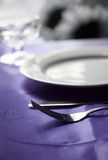 Fine Dinning Stock Photography