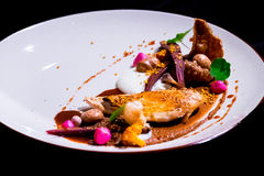 Fine dinning dish with duck fillet, green leafs. Stock Image