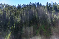 Fine mist over the Yellowstone River stock image