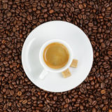 Fine espresso in cup on coffee beans Royalty Free Stock Photography