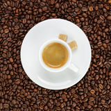 Fine espresso in cup on coffee beans Royalty Free Stock Photo