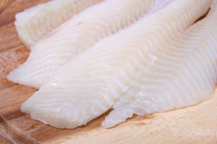 Fine Fish Fillet IV. A closeup picture of some fish fillet Royalty Free Stock Photos