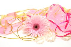 Fine flower Royalty Free Stock Photography