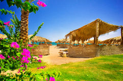 Free Fine Flowers And Exotic Beach. Stock Image - 25488601