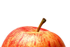 Fine fresca della mela su Immagine Stock
