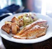 Fine fritta di tilapia su Fotografie Stock