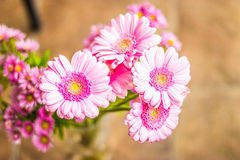 Fine funerea della corona dei fiori rosa su immagine stock libera da diritti