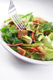 Fine generica dell'insalata in su Fotografie Stock Libere da Diritti