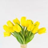 Fine gialla del mazzo del tulipano su Fotografia Stock Libera da Diritti