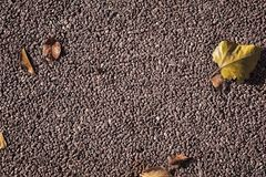 Fine Gravel background composition with autumn leafs royalty free stock image