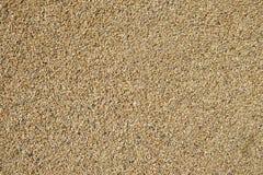 Fine gravel background Stock Photo