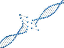 Fine image 3d of broken dna illustration Royalty Free Stock Photo