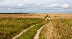 Fine landscape rural road Stock Photo