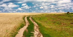 Fine landscape rural road Stock Images